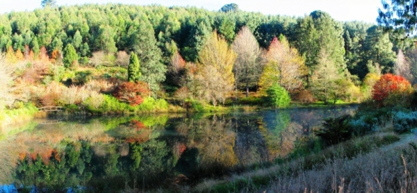 This late autumn panorama from my big window introduces you to the view I live with... not to shabby, I would say! ;-)