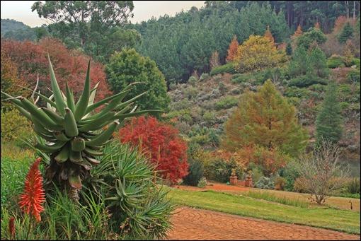 Arboritum in late autumn