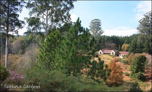 2 House from arboretum