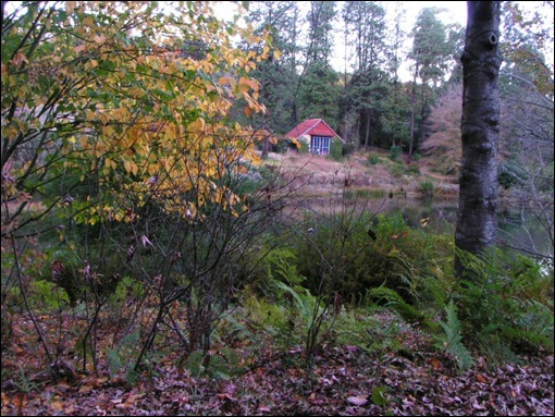 My Cottage in autumn