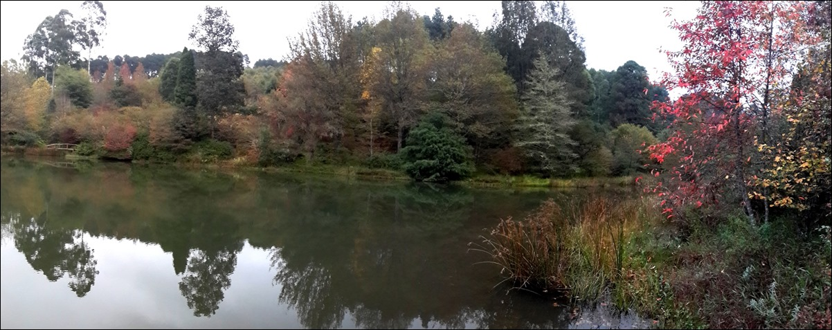 Freddie's Dam panorama